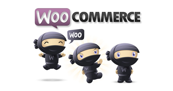 Download WooCommerce eCommerce Plugin