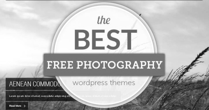 Best 4 WordPress Themes for Photography